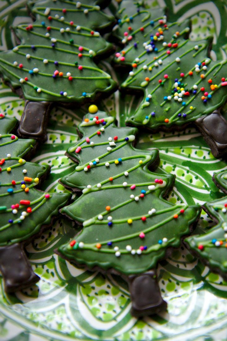 Dark Chocolate and Honey Spice Cookies | La Pêche Fraîche