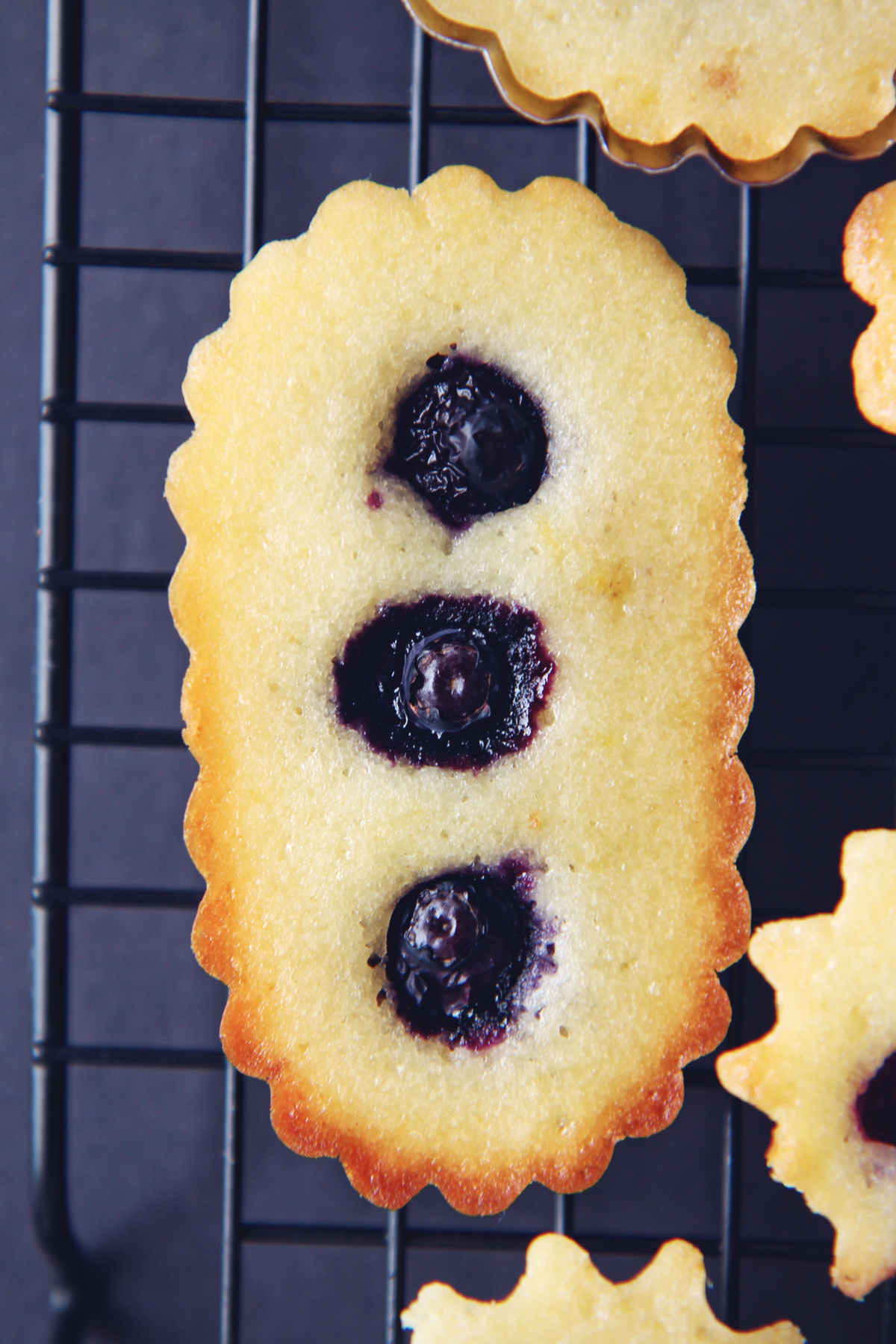 Lemon Blueberry Pound Cakes   La Pêche Fraîche